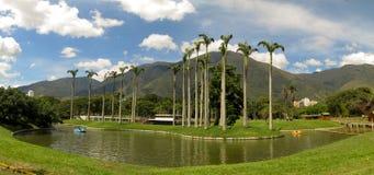 阿维拉山加拉加斯委内瑞拉Warairarepano美丽的景色  免版税库存照片