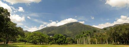 阿维拉山加拉加斯委内瑞拉Warairarepano美丽的景色  库存照片