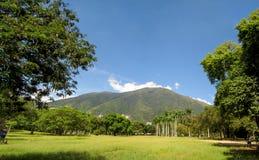 阿维拉山加拉加斯委内瑞拉Warairarepano美丽的景色  图库摄影