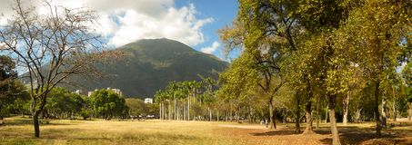阿维拉山美丽的景色从东方公园加拉加斯委内瑞拉的 库存图片