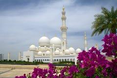 阿联酋。阿布扎比。白色清真寺。 免版税库存照片