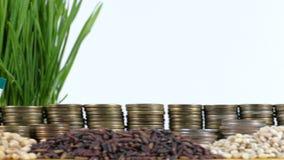 阿联酋沙文主义情绪与堆金钱硬币和堆麦子 股票视频