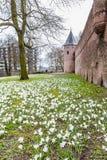阿莫斯福特荷兰的古城中心 免版税库存图片