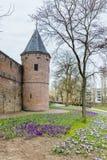 阿莫斯福特荷兰的古城中心 免版税库存照片