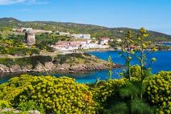 阿西纳拉岛海岛在撒丁岛,意大利 图库摄影