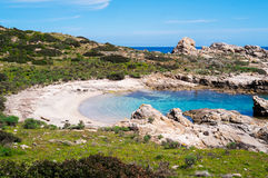 阿西纳拉岛海岛在撒丁岛,意大利 免版税图库摄影
