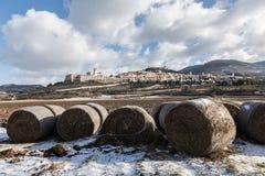 阿西西、haybales和雪 免版税库存图片