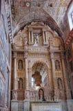 阿西西圣法兰西斯教会在果阿旧城,印度 库存图片