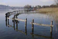 阿讷西河床城市湖芦苇 库存照片