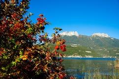 阿讷西美丽的湖在法国阿尔卑斯 免版税库存图片