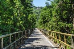 阿迪杰谷的循环运输路线 免版税库存照片
