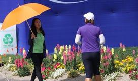 阿那启发高尔夫球比赛的艾米杨2015年 免版税图库摄影