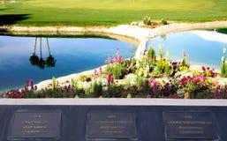 阿那启发高尔夫球比赛的高尔夫球场2015年 库存图片