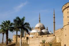 阿里城堡mohamed清真寺saladin 免版税库存图片
