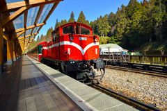 阿里山森林火车站平台 免版税图库摄影