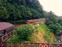 阿里山森林铁路在一个雨天 免版税库存照片