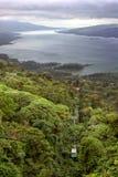 阿雷纳尔肋前缘在雨rica电车的森林湖 库存图片