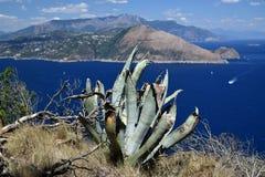 阿马飞海岸和索伦托的看法从别墅Jovis在卡普里岛,意大利 免版税图库摄影