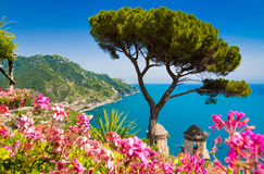 阿马飞海岸,褶皱藻属,意大利 免版税库存照片