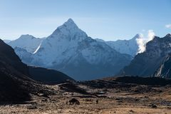 阿马Dablam在Dzongla村庄在一个早晨, Everes的山峰 图库摄影