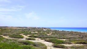 阿鲁巴自然秀丽  北海岸越野阿鲁巴 惊人的石沙漠风景、蓝色海和蓝天 影视素材