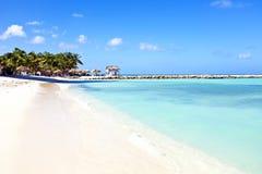 阿鲁巴的棕榈滩 库存图片