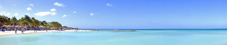 阿鲁巴的棕榈滩 免版税库存照片