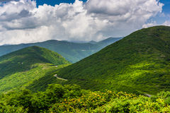 阿巴拉契亚山脉的看法从崎岖的石峰的,在B 免版税库存照片