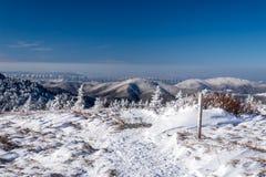 阿巴拉契亚足迹冬天高涨 库存照片