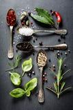 附加芳香烹调要素食物草本成份自然选择香料 免版税库存照片