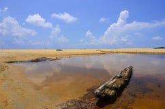 黏附在有美丽的蓝天的湖外面的漂流木头 微量 免版税库存照片