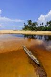 黏附在有美丽的蓝天的湖外面的漂流木头 免版税图库摄影