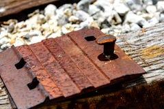 黏附铁路的钉  免版税库存图片