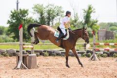 登陆与车手的一匹马的片刻在跃迁以后通过障碍 免版税库存照片