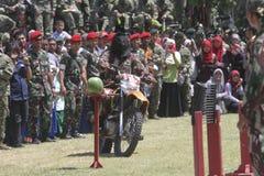 陆军特种部队 图库摄影
