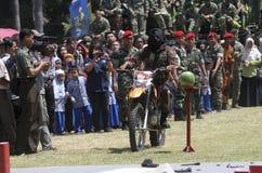 陆军特种部队 库存照片