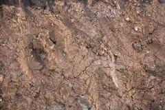 陆运裂缝 库存图片