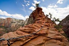 从登陆远足的天使的风景在锡安国家公园 免版税库存照片