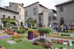 陈列圣佩莱格里诺在菲奥雷在维泰博-意大利 免版税库存图片