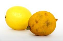 陈旧和新鲜的柠檬 库存照片