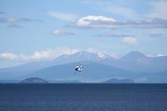 降伞,新西兰 免版税库存图片