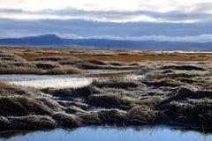 降低克拉马思全国野生生物保护区 免版税库存照片