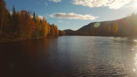 降低在秋天河和森林 影视素材