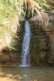 降低在Ein Gedi绿洲,以色列的瀑布 免版税库存图片