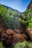 降低鲜绿色水池 库存照片