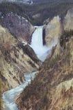 降低黄石公园的秋天大峡谷 免版税库存图片