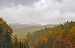 降雨量在阿尔根金族公园,加拿大 免版税库存照片