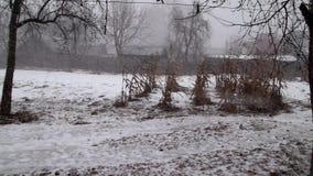 降雪和冬天初期,新年的假日 股票视频