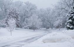 降雪在公园,雪犁 免版税图库摄影