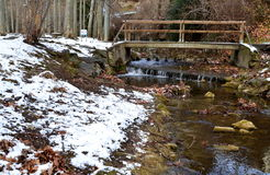 降雪在公园 免版税库存图片
